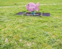 Playground spring fish Royalty Free Stock Photos