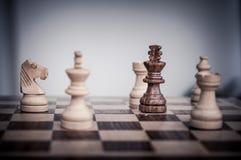 Playin schack Royaltyfri Bild