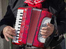Playing the Accordion Royalty Free Stock Image