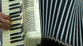 Playing Accordion stock video