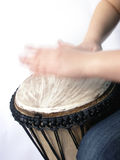 Playing african handdrum. Playing african native djembe drum Stock Image