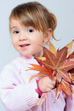 Playing with autumn leaves Royalty Free Stock Image