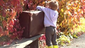 Playing in the autumn park. Adorable boy waiting with suitcase. Fall foliage. Autumn Baby boy in Fall Leaves Park stock footage