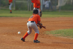 Playing Ball. Little league baseball player concentrating on catching a ball in play Stock Photography