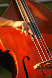 Playing bass. A close-up of a musician playing a stand-up bass Royalty Free Stock Images