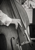 Playing Bass Fiddle Stock Photography