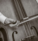 Playing Bass Fiddle Royalty Free Stock Images