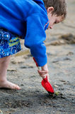 Playing at the beach. Young boy digging in the sand with a shovel at the beach Stock Image