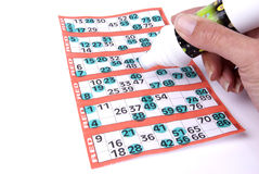 Playing Bingo. Waiting for a full house of bingo Stock Images