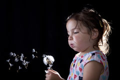 Playing and blowing on a dandelion Stock Photos