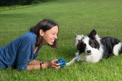 Playing with a border collie Stock Image