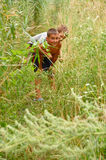 Playing boys in long grass Stock Photo