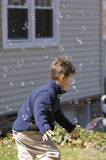 Playing with Bubbles royalty free stock image