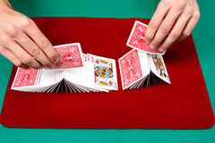Playing with the cards Stock Photos