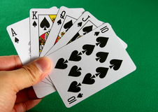 Playing cards. A hand holding spade royal straight flush, against green table background royalty free stock image