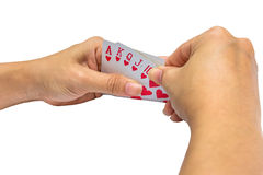 Playing cards in hand isolated on white background.  stock image