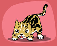 Playing cat. A cat was playing. Did you need to play with us Vector Illustration