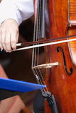 Playing the cello. Man playing the cello at a wedding reception royalty free stock image