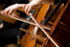 Playing Cello Royalty Free Stock Photography