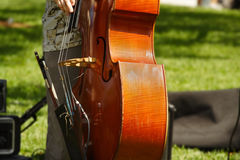 Playing The Cello Royalty Free Stock Photos