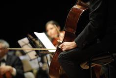 Playing  cello Royalty Free Stock Photos