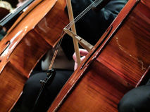 Playing on cellos in a concert stock photography
