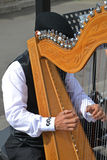 Playing celtic harp Royalty Free Stock Photography