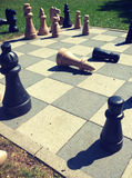 Playing chess game in the park Stock Image
