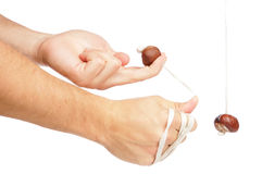 Playing conkers Stock Images