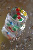 Playing dice in transparent resin and multicolored numbers Royalty Free Stock Image