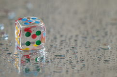 Playing dice in transparent resin and multicolored numbers Royalty Free Stock Photography