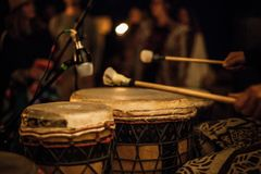 Playing djembe with drum sticks royalty free stock images