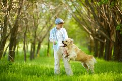 Playing with dog. Portrait of cute lad playing with Labrador in park Stock Photo