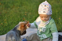 Child playing with a dog Stock Photography