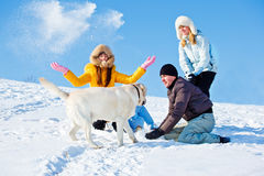Playing with dog in winter park Royalty Free Stock Photography