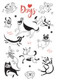 Playing dogs. Funny lap-dog, happy pug, mongrels and other breeds. Set of isolated vector drawings for design.  stock illustration