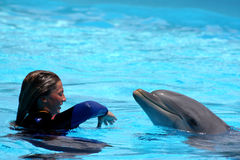 Playing With The Dolphin - EDITORIAL USE ONLY Royalty Free Stock Photos