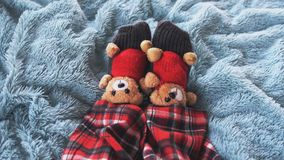 Playing feet at home in bed dressed socks with cute teddy bears and in pajamas.Top of view. Playing foot at home in bed dressed socks with teddy bears and in Royalty Free Stock Photography