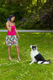 Playing fetch with a border collie dog Royalty Free Stock Photography