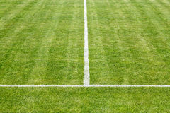 Playing field Stock Photography