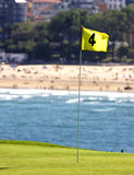 Playing golf. Near the beach Stock Photography