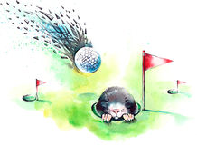 Playing Golf Stock Image