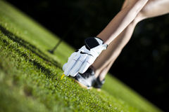 Playing golf. Thumbs up on golf, bright colorful vivid theme Royalty Free Stock Images