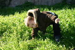 Playing in the Grass Royalty Free Stock Image
