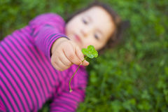 Playing at grass meadow with clovers Royalty Free Stock Photo