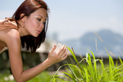 Playing in the grassy field Stock Photography