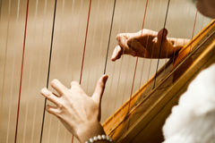 Playing the harp Stock Image