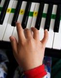Playing keyboard Royalty Free Stock Image