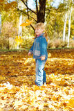 Playing with leaves Stock Image