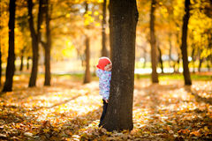 Playing with leaves_2. A little girl hiding behind a tree Royalty Free Stock Photo